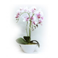 Artificial Phalaenopsis