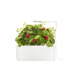 Strawberry Smart Pot